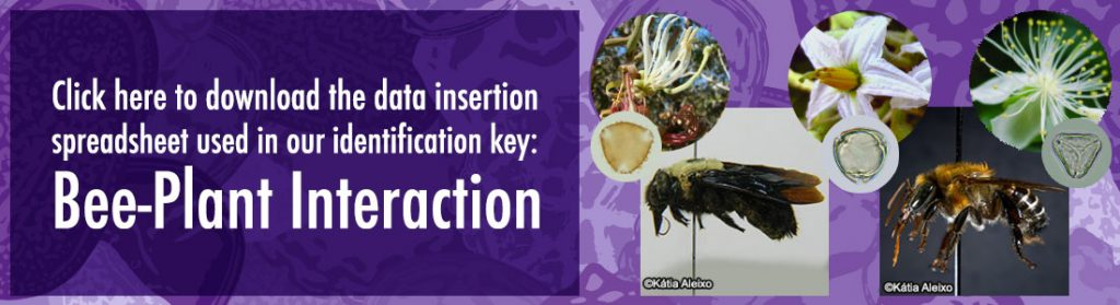 Click here to download the data insertion spreadsheet used in our identification key: Bee-Plant Interaction