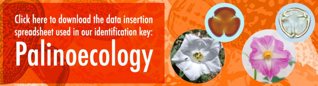 Click here to download the data insertion spreadsheet used in our identification key: Palinoecology